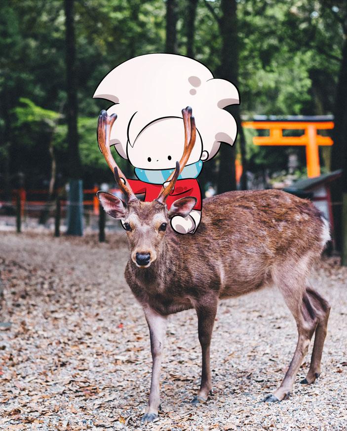 Ai-Japan-deer