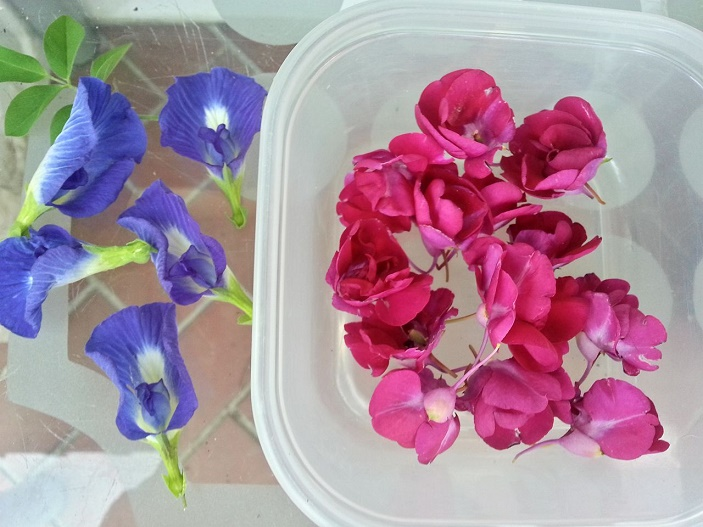 fresh-edible-flowers_jan2019-wk3