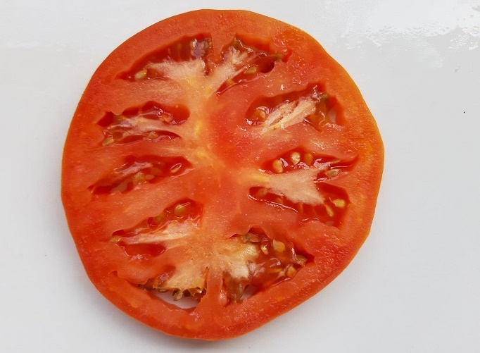 tomato-cross-section_april-2019-wk1