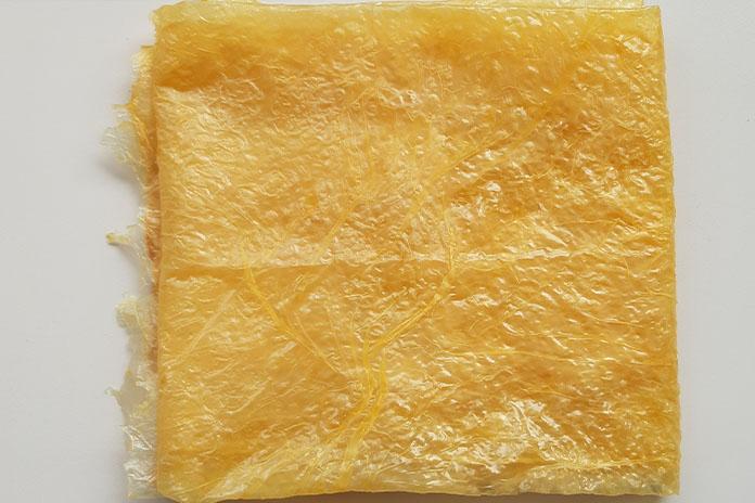 beancurd skin