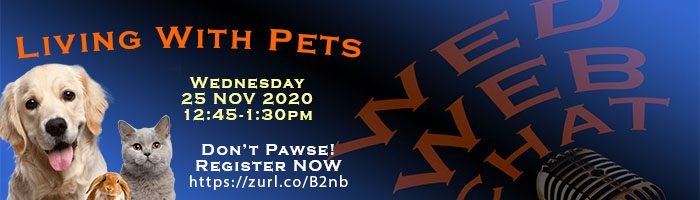 WED WEB CHAT pets